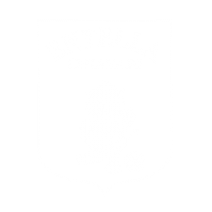 Noisefeed_Entella